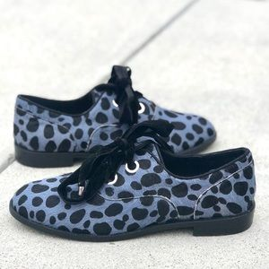 Shelly's London BLUE pony hair Oxford Black Dot 7